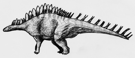 Kentrosaurus Sketch